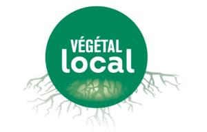 Logo vegetal local 300x192